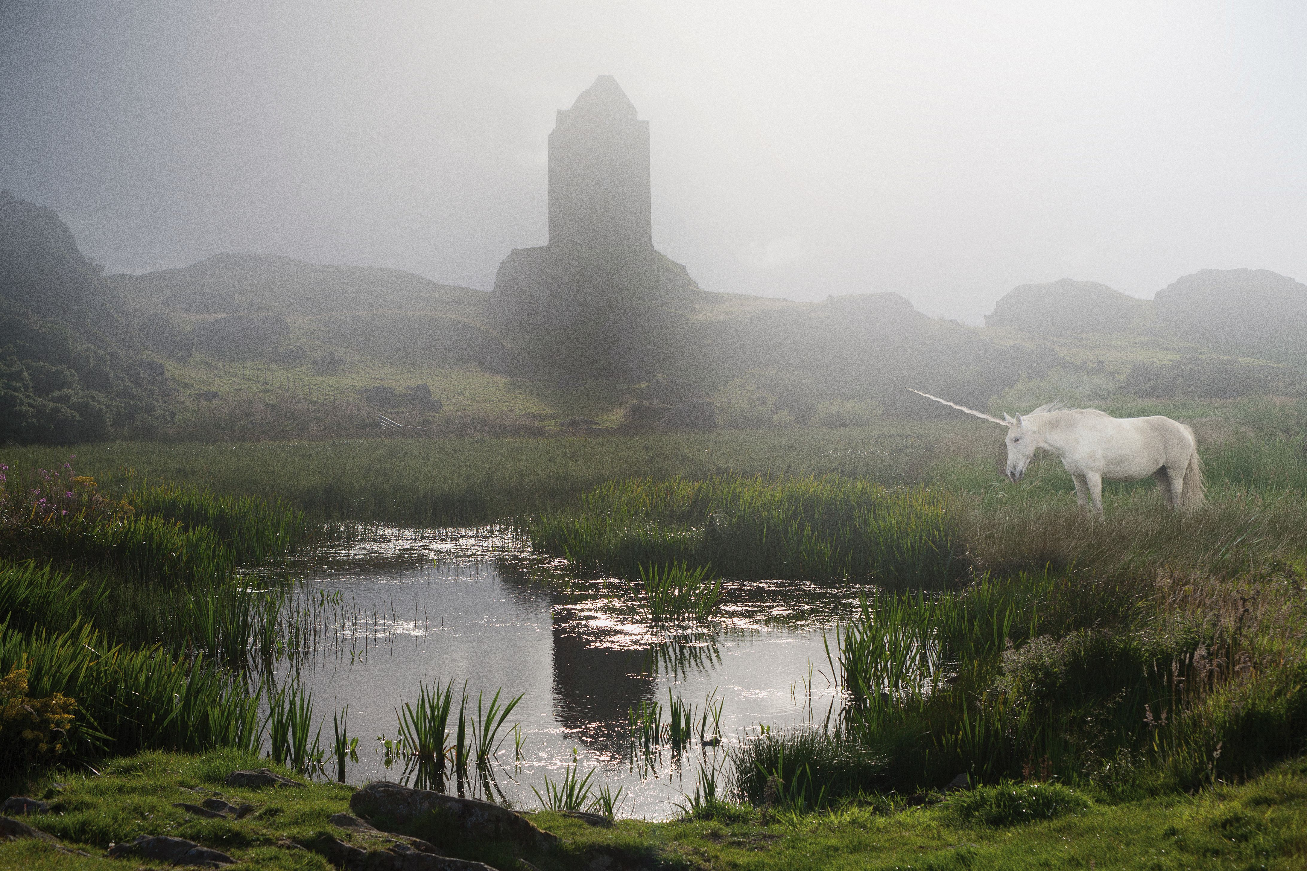 Smailholm Tower (Schottland)